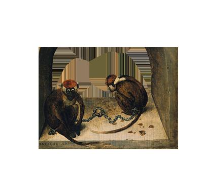 Due scimmie incatenate, Pieter Bruegel