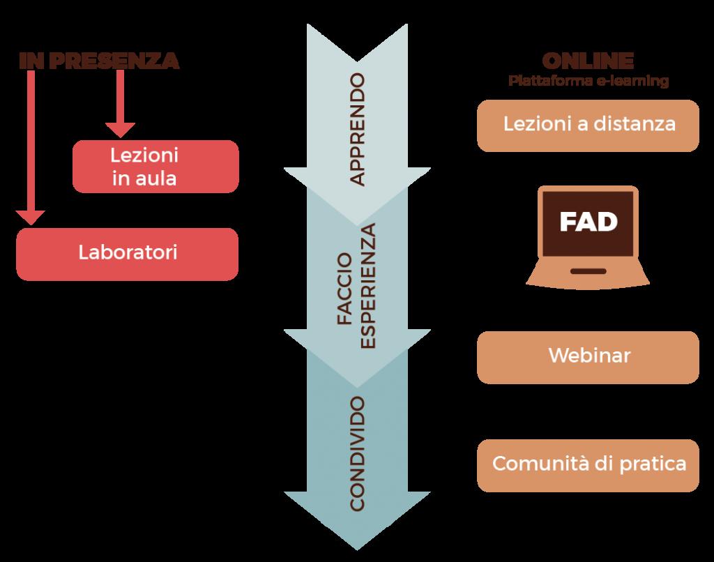 Grafico Metodo Apprendimento